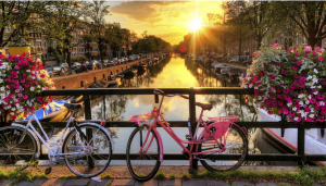 LC International & LC Germany @ Amsterdam